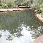 Pool in Sassafras Ck (147519)