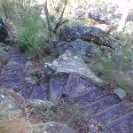 Steps on Glenbrook Gorge Track (148095)