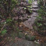 Track across creek (148791)