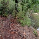 Glimpse of Erskine Creek (150282)