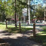 The Lakes of Cherrybrook park (152470)