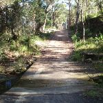 Causeway on Blackwattle trail (152806)