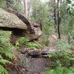A nice rock outcrop (154228)