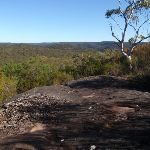 Panorama over Ku-ring-gai Chase NP from the Wallaroo track (155617)