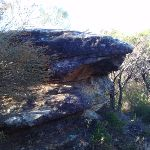 Rock outcrop on the Willunga track (156388)