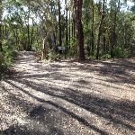 Along Stringybark ridge (157273)