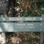 Round Walk sign (16366)