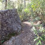 A boulder beside the track (164419)
