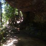 Track under rock overhang (16612)