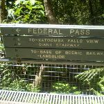 Federal Pass sign (16639)