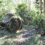 Scattered boulders (166540)