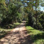 Pleasant walking on Ten Mile Hollow Rd (167078)