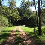 The old Ten Mile Hollow Rd (167612)