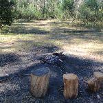 Ten Mile Hollow Campsite (169757)