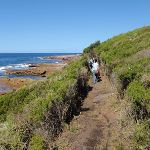 Walking north of Shelley Beach (172011)