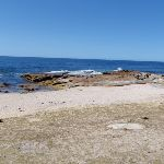 Shelley Beach (172026)