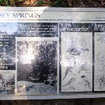 Information sign at Jersey Spring (172950)