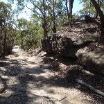 Rocks by the trail (174300)
