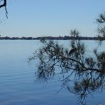 Across Tuggerah Lake (175977)