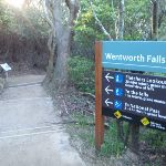 Track sign at Wentworth Falls Lookout (180459)