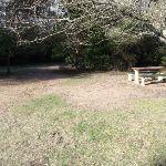 Gordon Park (185940)
