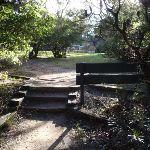 Gordon Falls Reserve (185955)