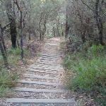 Stepped track (186021)