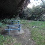 Picnic tables at Lyrebird Dell (186744)