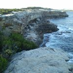 Coast line of Botany Bay National Park (18946)