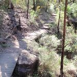 Track above Nepean River (190008)