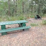 Banksia Picnic Area (190838)