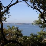 Across Broken Bay to Barrenjoey Headland (19823)