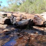 Rocky Ponds Tank Creek (200578)