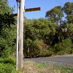 Jacqueline Ave Signpost (20072)