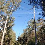 Powerlines overhead (202783)