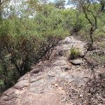 Highway Ridge track (205603)