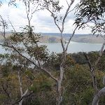 Looking over the Hawkesbury River (205648)