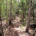 Highway Ridge track (205822)