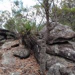 Lovely outcrop (206041)