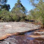 Tank Creek (206545)