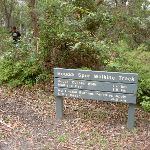 Signpost at picnic area (21515)