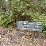 Signpost at picnic area (21515)