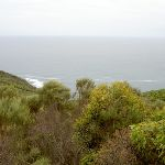 View from Bouddi Lookout (21563)
