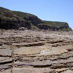 Rockshelf from Maitland Bay looking east (21761)