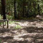 Stroms Fire Trail Gate (21890)
