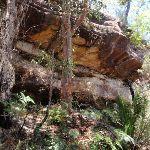 Pearl Beach Cave (219590)