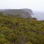 View from headland north of Bombi (22019)