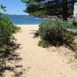 Pearl Beach (220763)