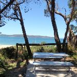 Picnic table at Pearl Beach (220808)