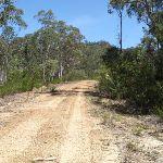 Winding along Donny's Track (224408)